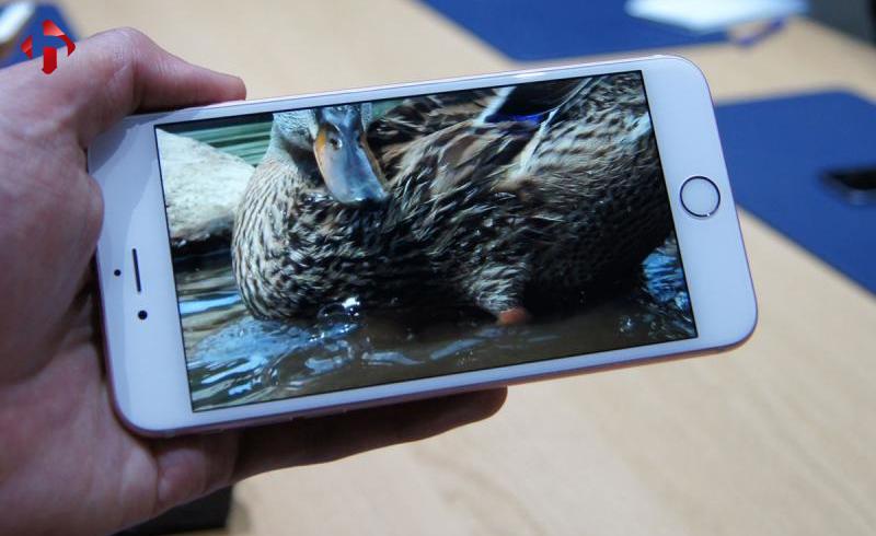 Hiển thị hình ảnh trên iPhone 6s Plus CPo